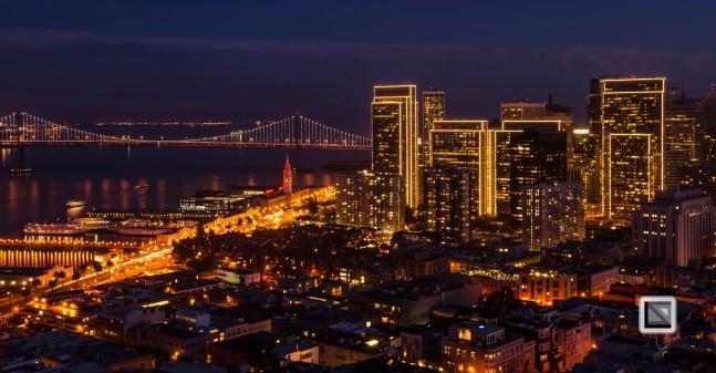 city lights-29