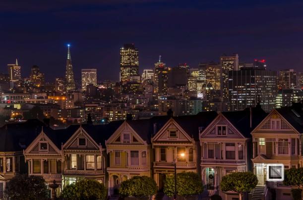city lights-30