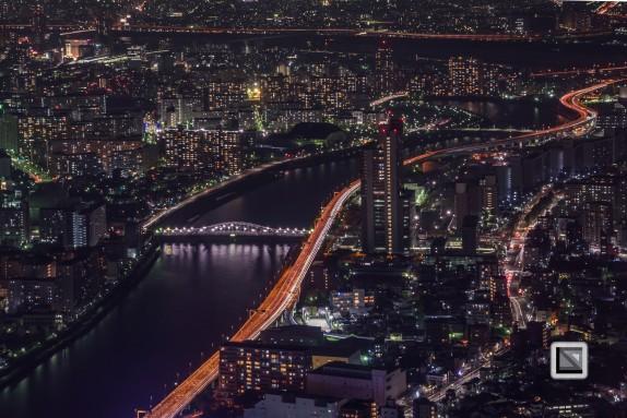 city lights-56