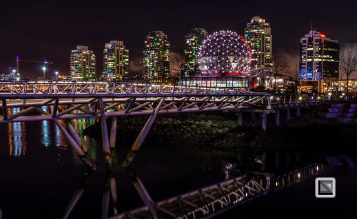 city lights-60