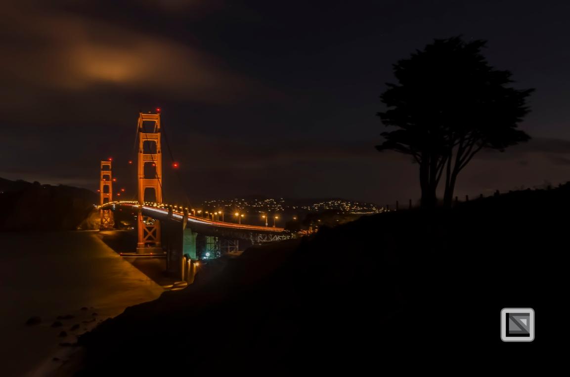 city lights-65