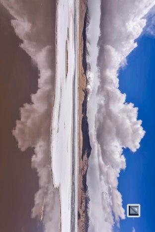 Nature Art-81