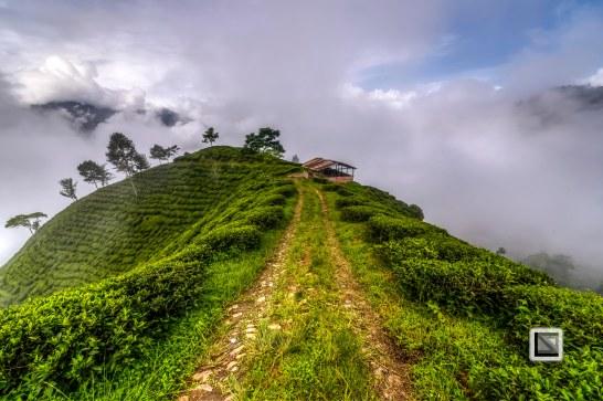 Darjeeling-32
