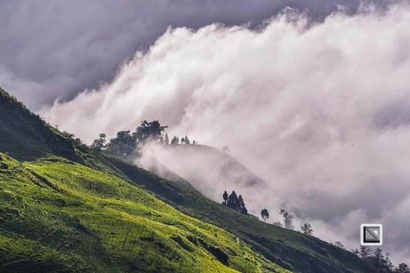 Darjeeling-9-2