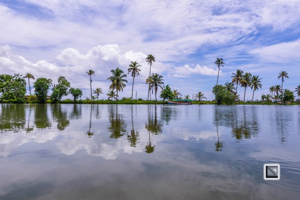 Kerala Backwaters-28