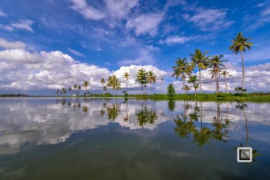 Kerala Backwaters-78