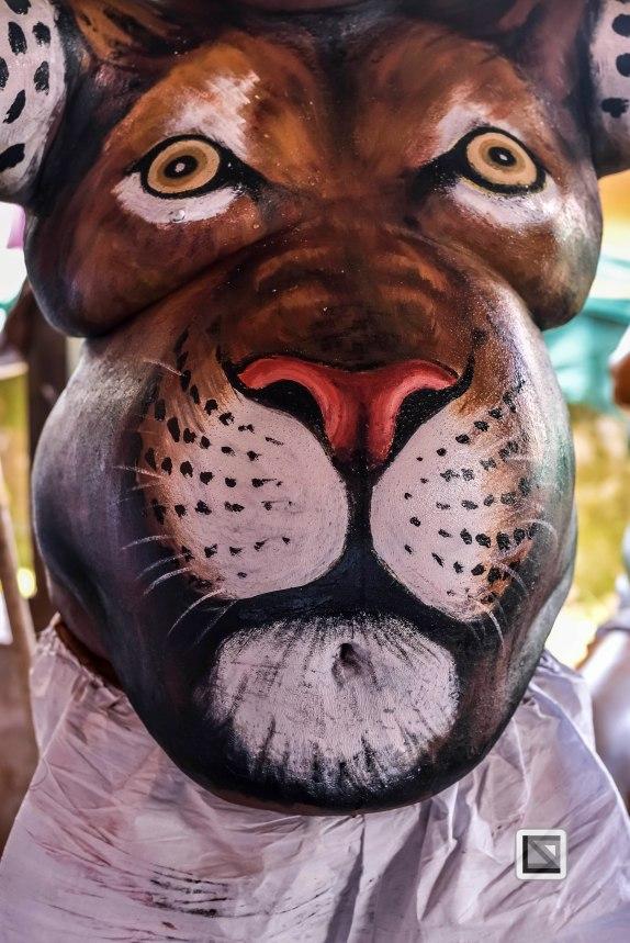 Pulikali Festival Thrissur Kerala 2015-111