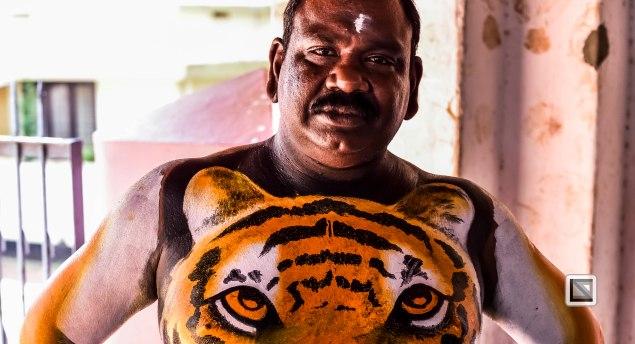 Pulikali Festival Thrissur Kerala 2015-21