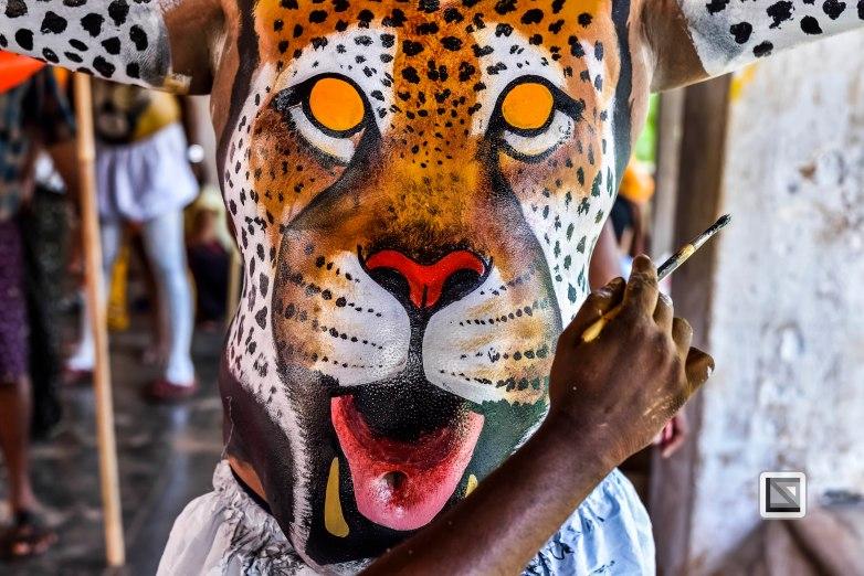 Pulikali Festival Thrissur Kerala 2015-24