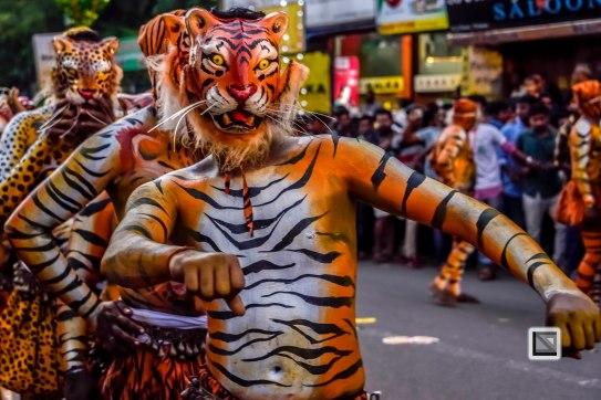 Pulikali Festival Thrissur Kerala 2015-81