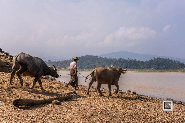 Chidwin River-48