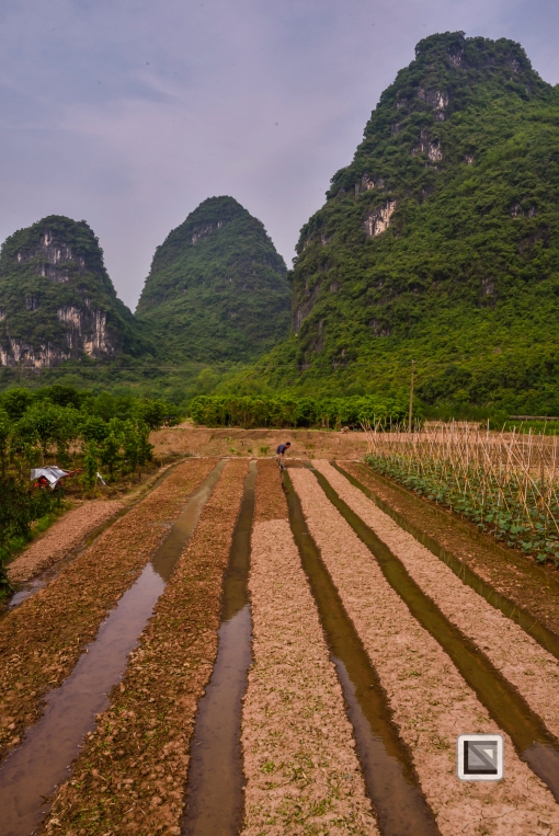 China - Guangxi - Zhuang - Guilin-15