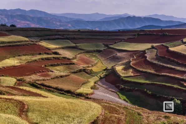 China - Yunnan - Dongchuan-20