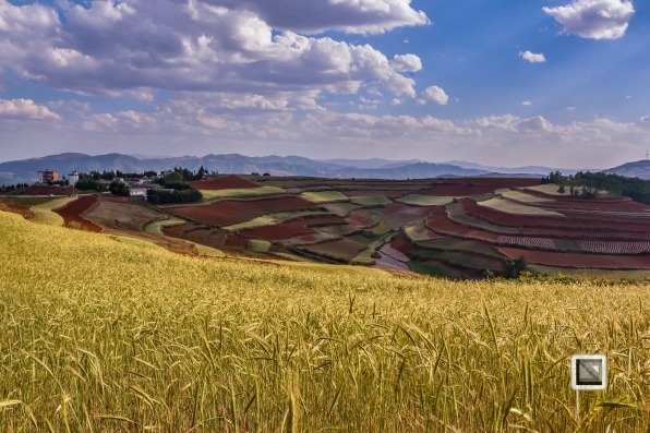 China - Yunnan - Dongchuan-21