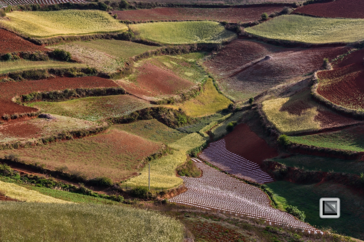 China - Yunnan - Dongchuan-28