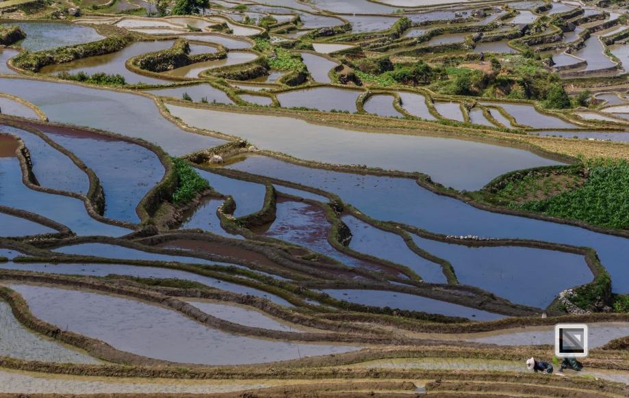 China - Yunnan - Yuanyang-11