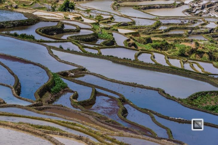 China - Yunnan - Yuanyang-12