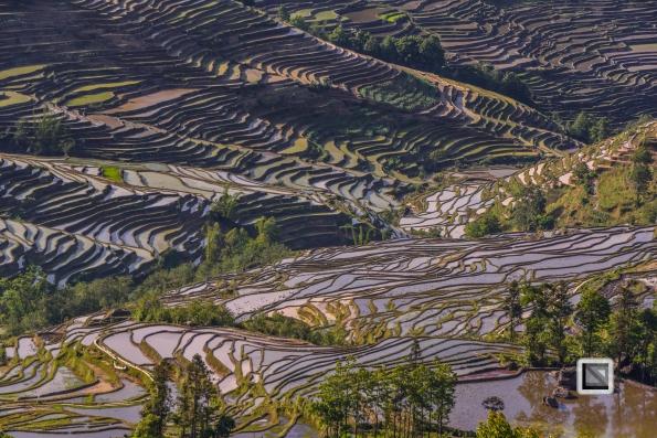 China - Yunnan - Yuanyang-25