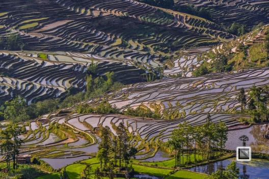 China - Yunnan - Yuanyang-26