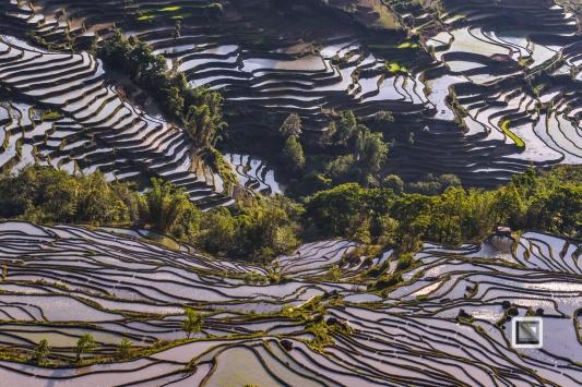 China - Yunnan - Yuanyang-28