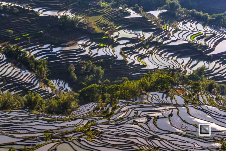 China - Yunnan - Yuanyang-29