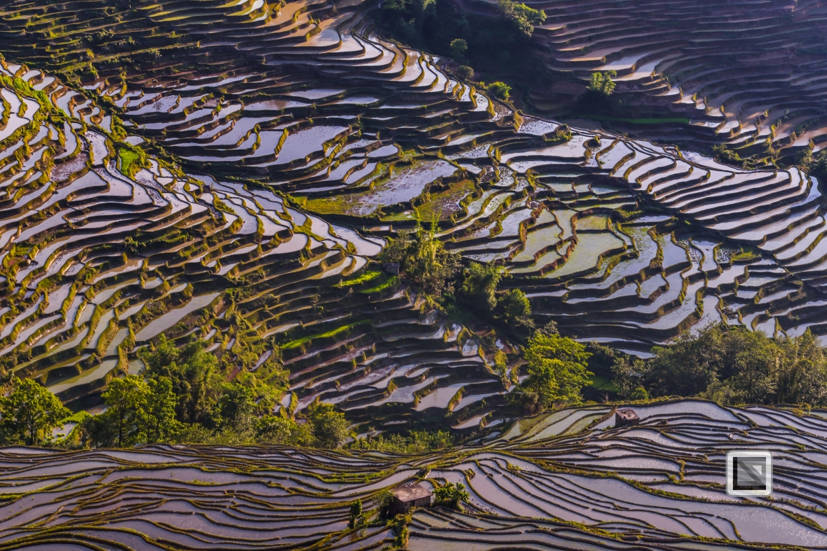 China - Yunnan - Yuanyang-30