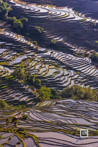 China - Yunnan - Yuanyang-31