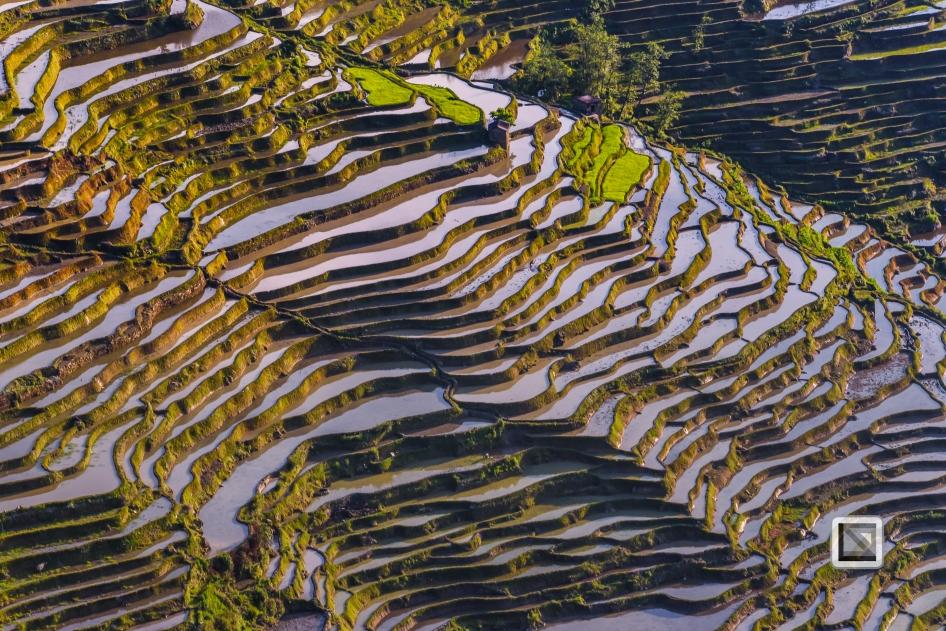 China - Yunnan - Yuanyang-32