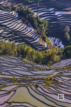 China - Yunnan - Yuanyang-33