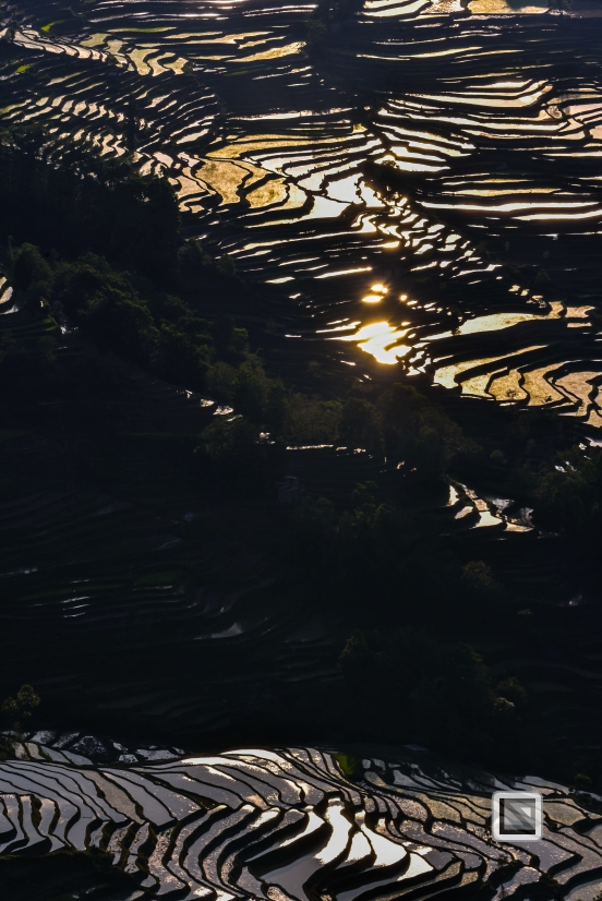 China - Yunnan - Yuanyang-34