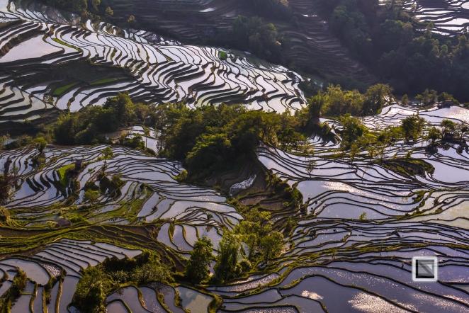 China - Yunnan - Yuanyang-35