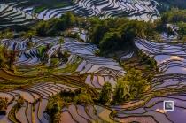 China - Yunnan - Yuanyang-36