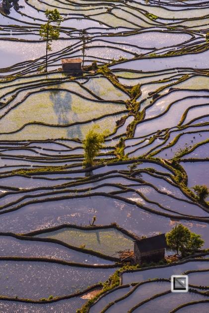China - Yunnan - Yuanyang-37