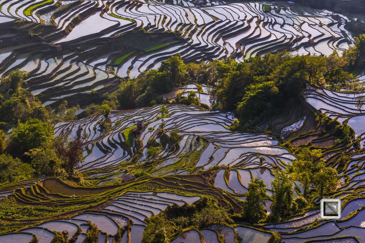 China - Yunnan - Yuanyang-38
