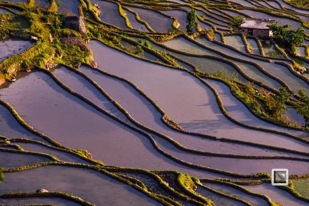 China - Yunnan - Yuanyang-39