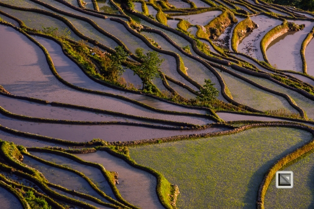 China - Yunnan - Yuanyang-40