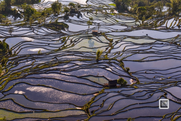 China - Yunnan - Yuanyang-41