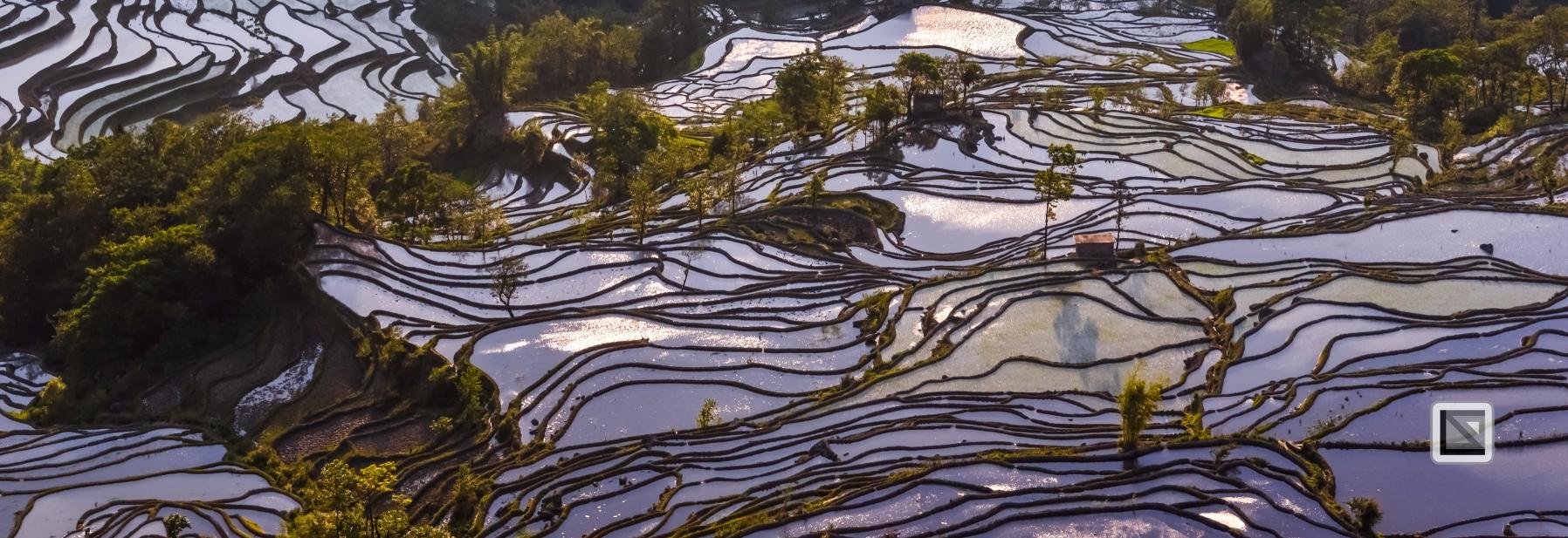 China - Yunnan - Yuanyang-42