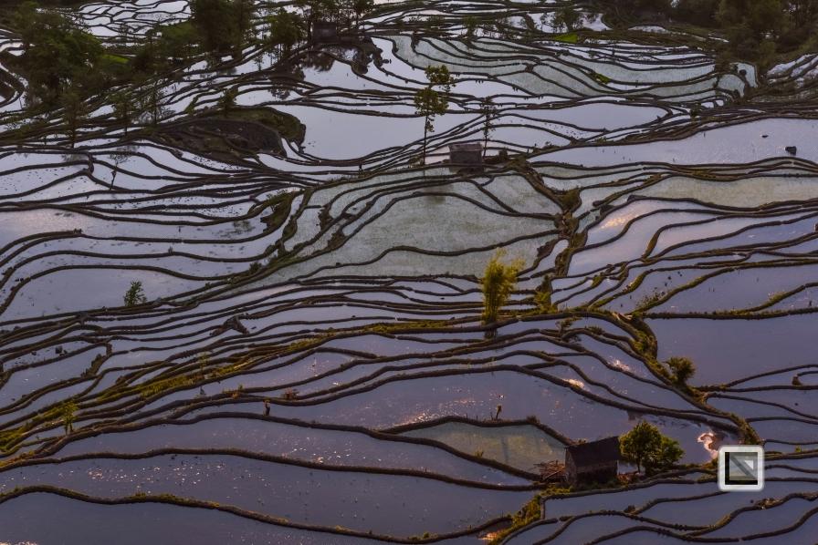 China - Yunnan - Yuanyang-44