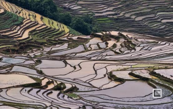 China - Yunnan - Yuanyang-53