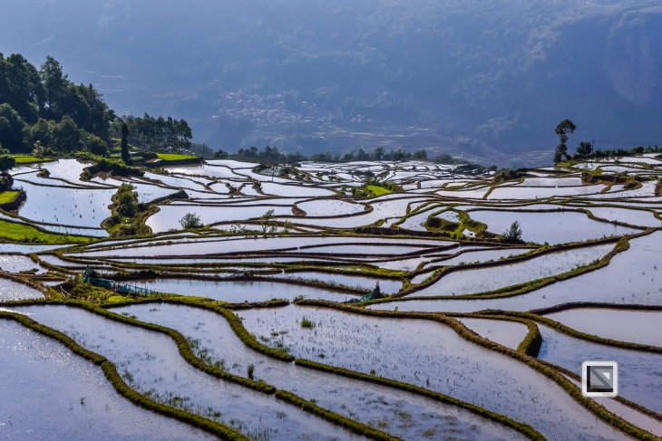 China - Yunnan - Yuanyang-67