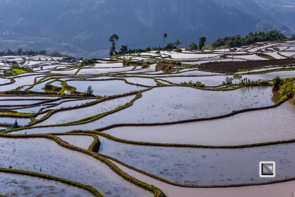 China - Yunnan - Yuanyang-71