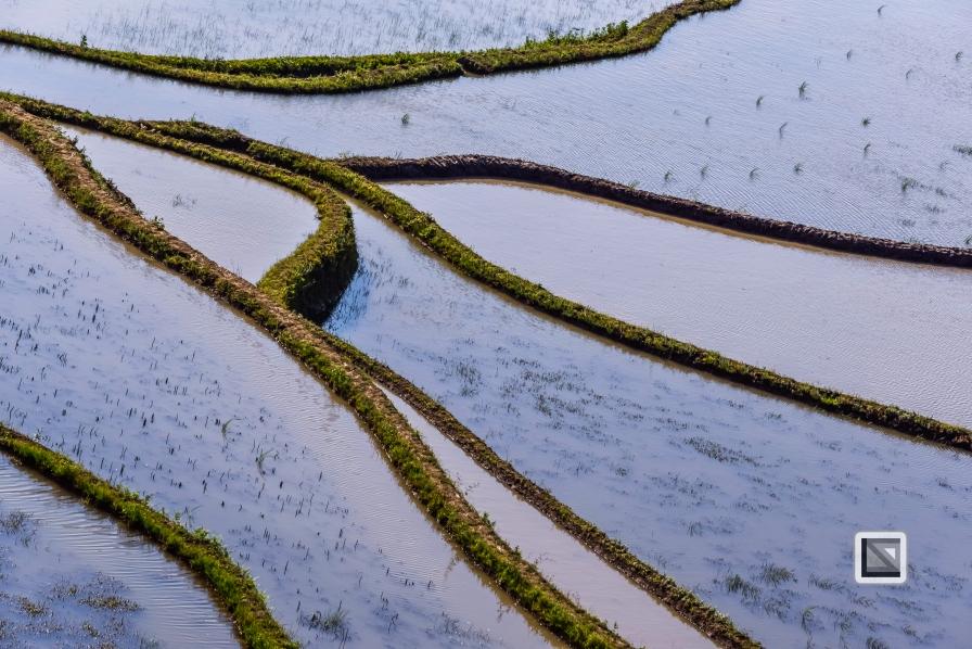 China - Yunnan - Yuanyang-72