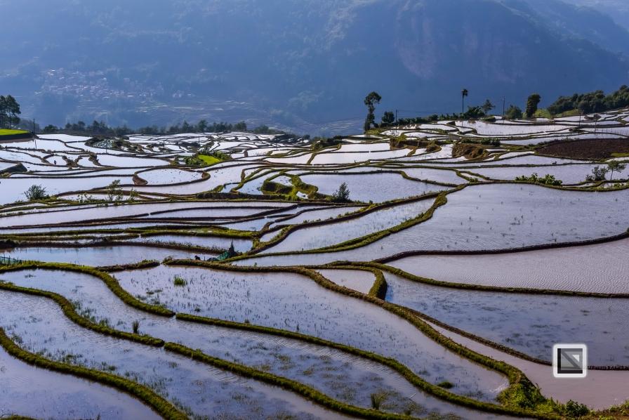 China - Yunnan - Yuanyang-74