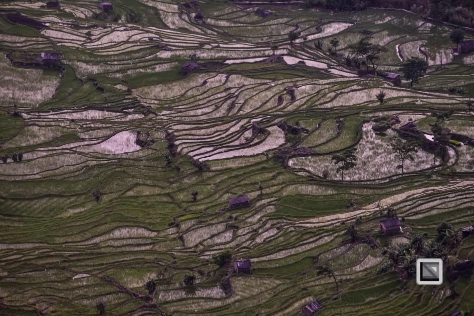 China - Yunnan - Yuanyang-77