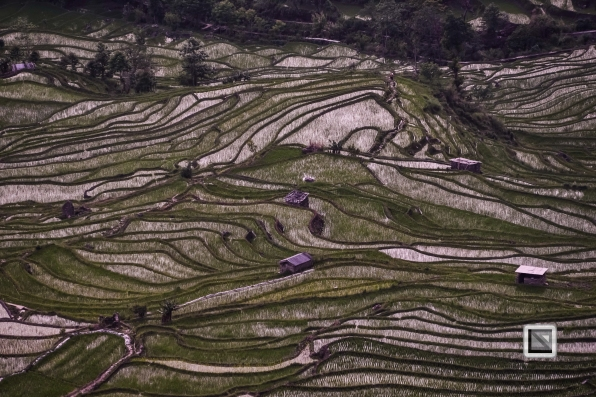 China - Yunnan - Yuanyang-78