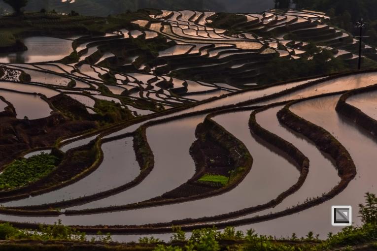 China - Yunnan - Yuanyang-81