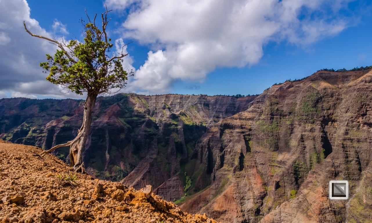 Hawaii Kauai-41