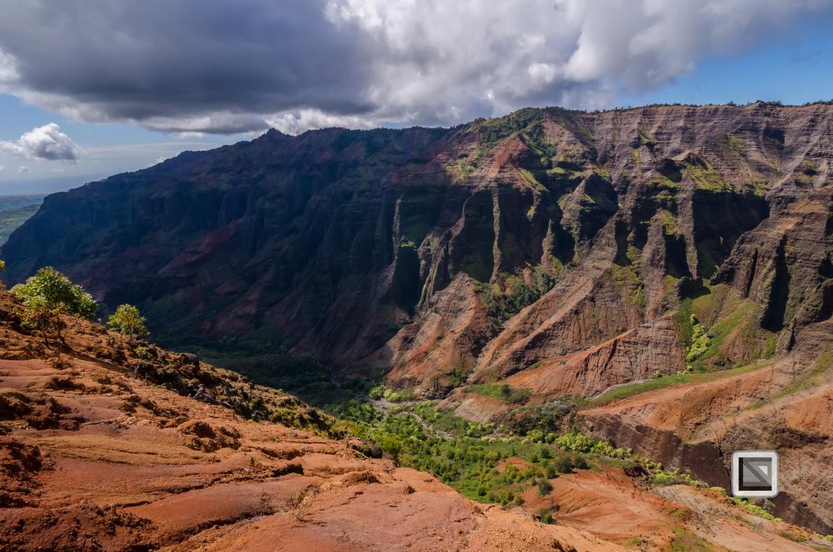 Hawaii Kauai-42