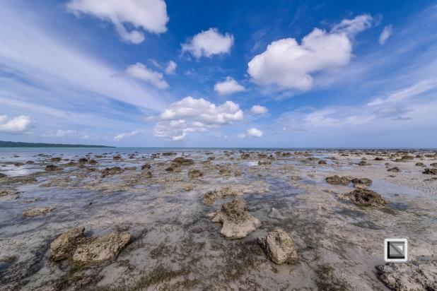 India - Andaman Islands - Havelock-3
